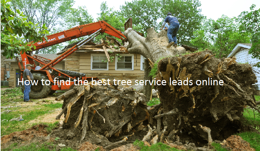How to generate better Construction Leads online? SEO Marketing vs Pay per Lead Advertising
